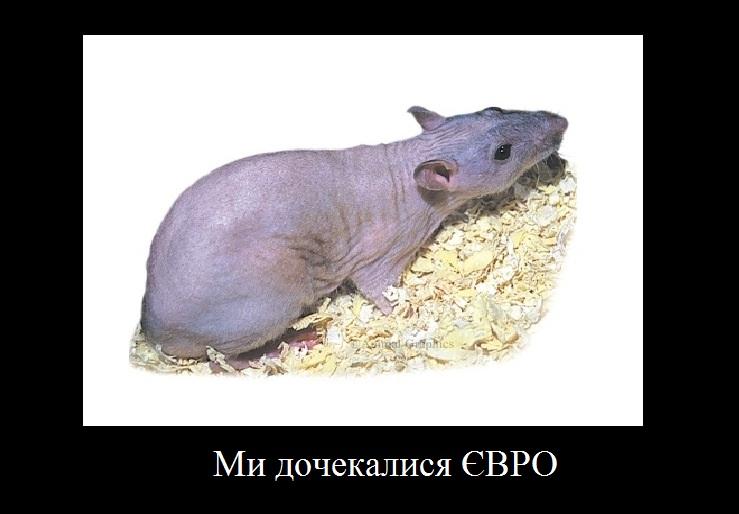 Парнишка доплатил украинской шлюхе с Киева 100 руб