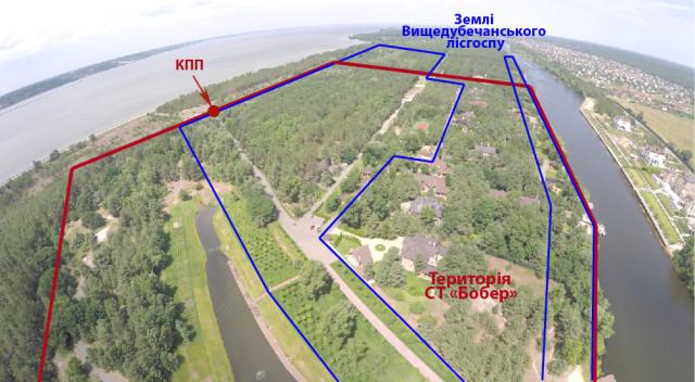 Червоним позначено територію садового товариства «Бобер», синім – ділянки лісгоспу