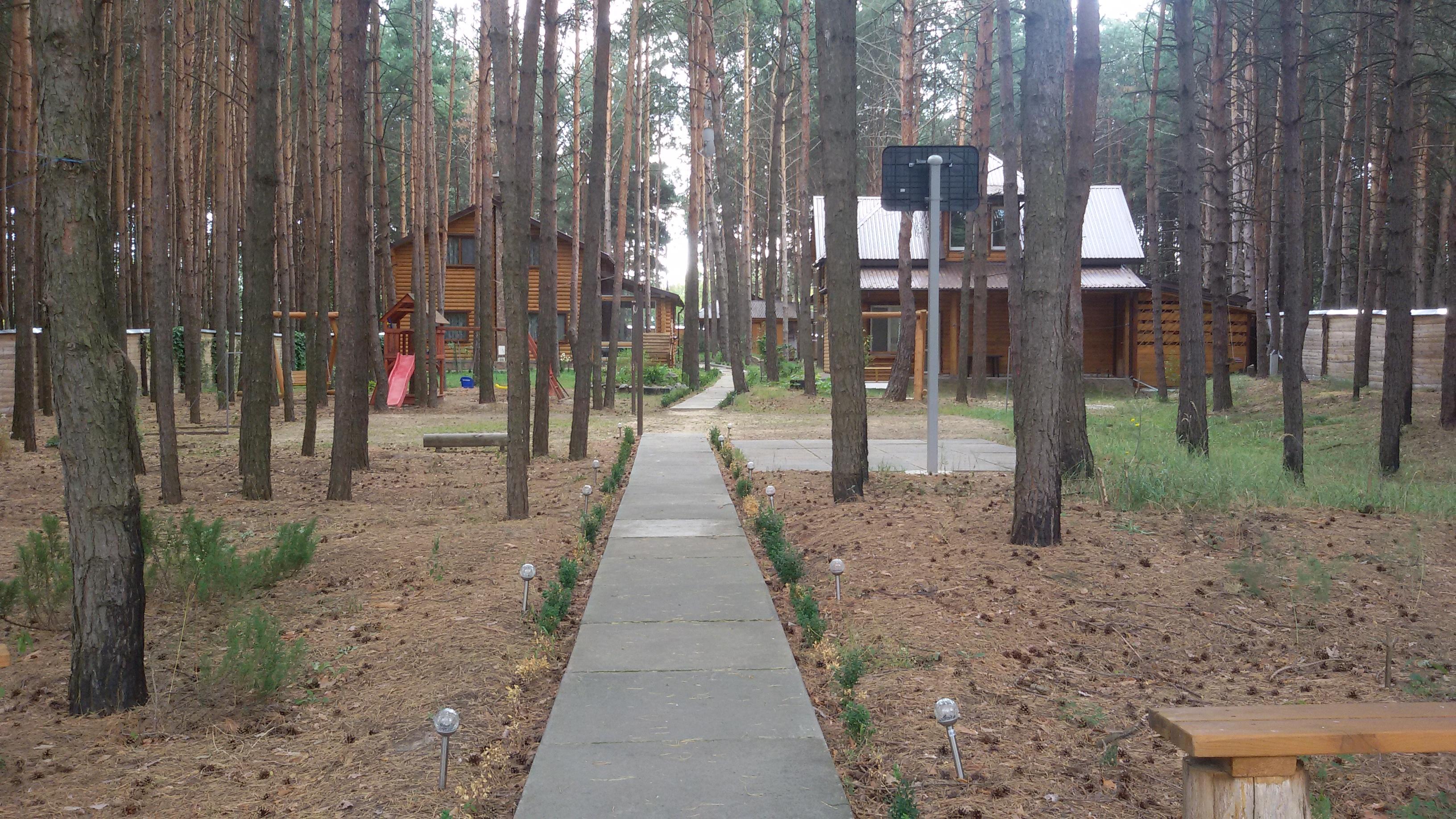 Картинки по запросу В Харкові за півтора роки вирубка дерев для підлеглих Кернеса подорожчала на 30%