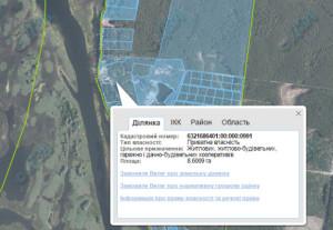Ділянка Синчука на кадастровій карті