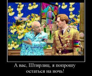 108417_a-vas-shtirlits-ya-poproshu-ostatsya-na-noch