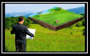 Як безстроково і безкоштовно отримати гектар на ВДНГ
